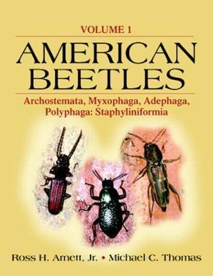American Beetles  Volume 1 by Ross H. Arnett, Jr.