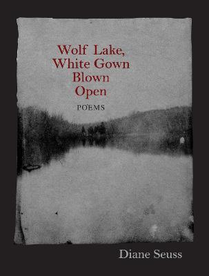 Wolf Lake, White Gown Blown Open by Diane Seuss