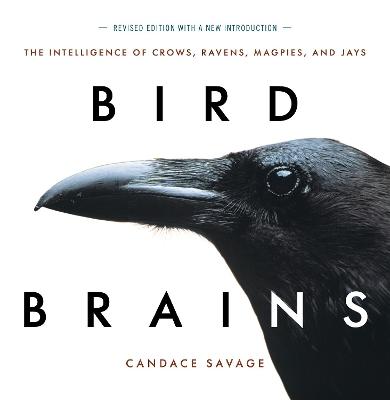 Bird Brains by Candace Savage