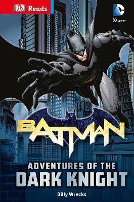 DC Comics Batman Adventures of the Dark Knight by Billy Wrecks