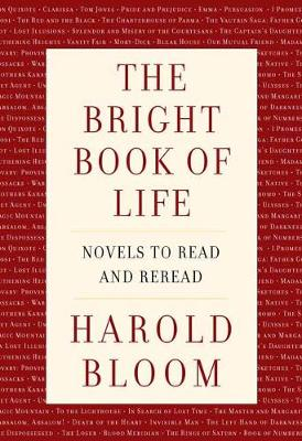The Bright Book of Life: Novels to Read and Reread book