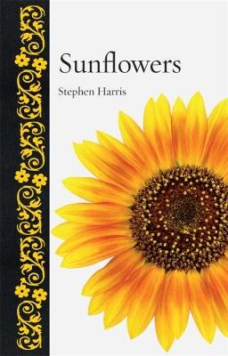 Sunflowers by Stephen A. Harris