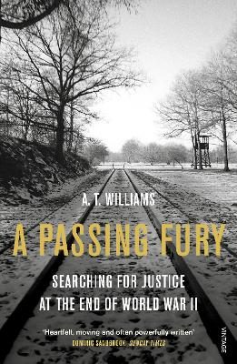 A Passing Fury by A. T. Williams