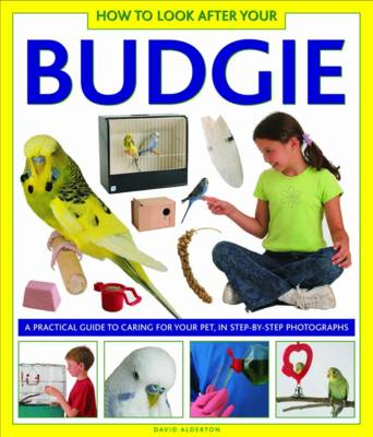 How to Look After Your Budgie by Alderton David