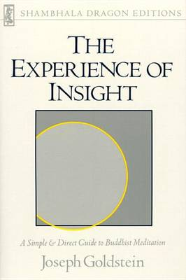 Experience Of Insight by Joseph Goldstein