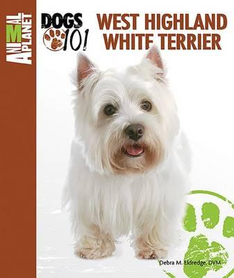 West Highland White Terrier by Debra M. Eldredge
