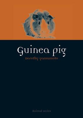 Guinea Pig by Dorothy Yamamoto
