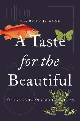 A Taste for the Beautiful by Michael Ryan