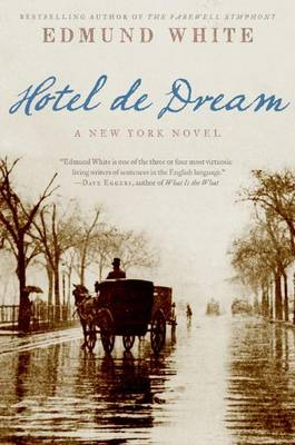 Hotel de Dream book
