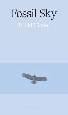 Fossil Sky by David Hinton