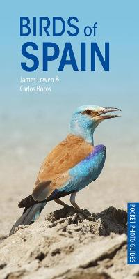 Birds of Spain by James Lowen