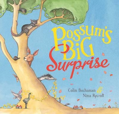 Possum's Big Surprise by Colin Buchanan