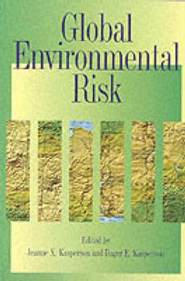 Global Environmental Risk by Jeanne X. Kasperson