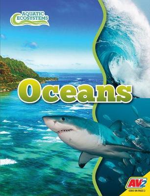 Oceans by John Willis