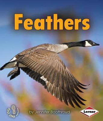 Feathers by Jennifer Boothroyd