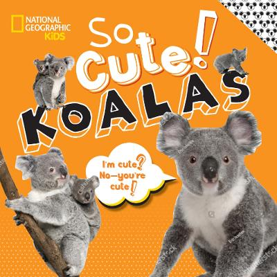 So Cute! Koalas book