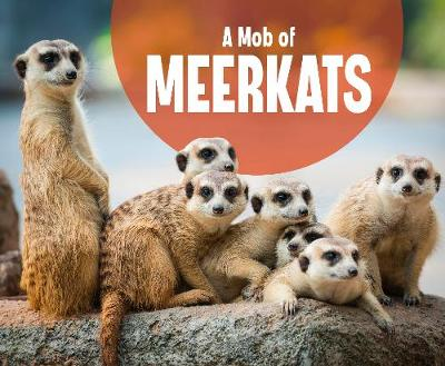 A Mob of Meerkats by Martha E H Rustad