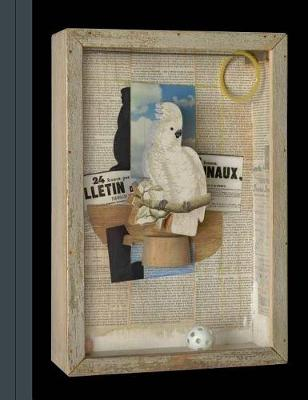 Birds of a Feather - Joseph Cornell's Homage to Juan Gris book