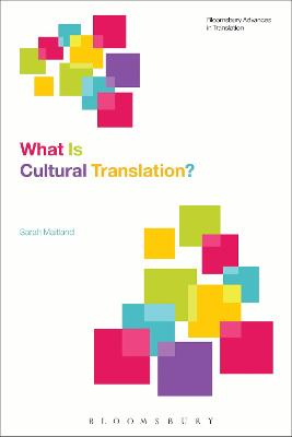 What Is Cultural Translation? book
