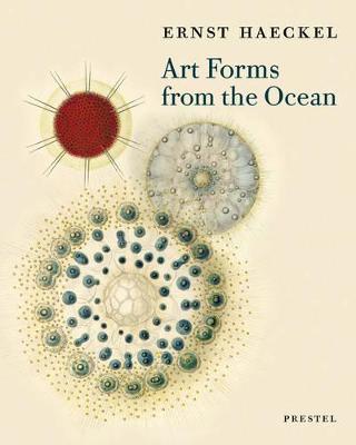 Art Forms from the Ocean by Olaf Breidbach