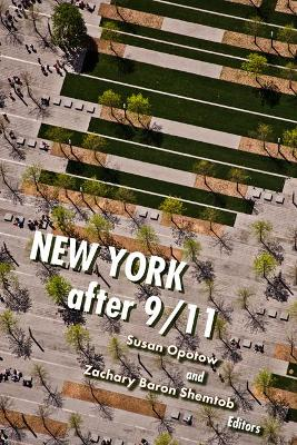 New York after 9/11 by Susan Opotow