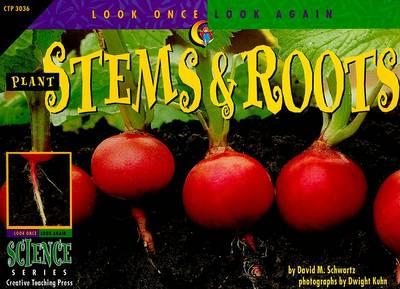 Plant Stems & Roots by David M Schwartz