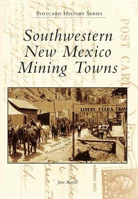 Southwestern New Mexico Mining Towns book