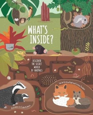 What's Inside?: Discover the Secret World of Animals by Giulia De Amicis