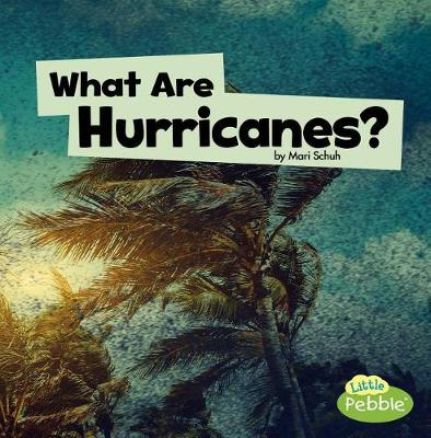 What Are Hurricanes? book
