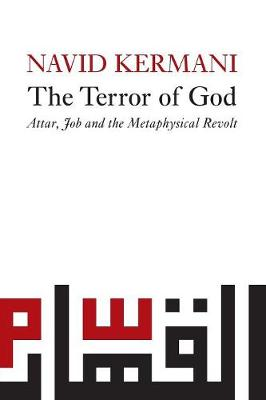 Terror of God book