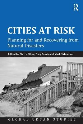 Cities at Risk book