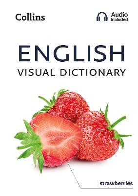 English Visual Dictionary: A photo guide to everyday words and phrases in English (Collins Visual Dictionary) by Collins Dictionaries