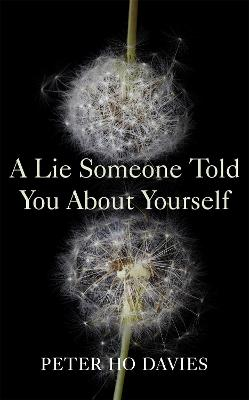 A Lie Someone Told You About Yourself by Peter Ho Davies