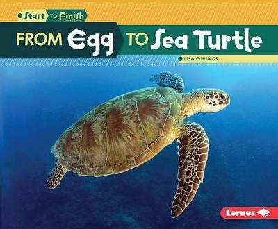From Egg to Sea Turtle by Lisa Owings