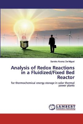 Analysis of Redox Reactions in a Fluidized/Fixed Bed Reactor by Sandra Alvarez de Miguel