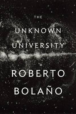 Unknown University by Roberto Bolano