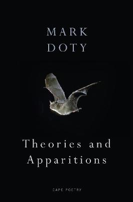 Theories and Apparitions book