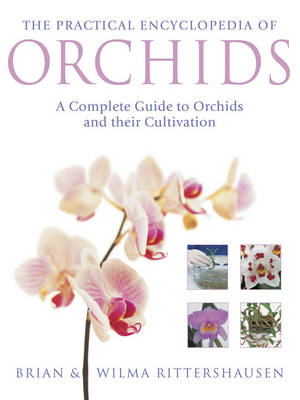Practical Encyclopedia of Orchids by Brian Rittershausen