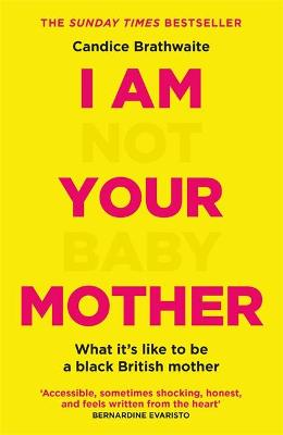 I Am Not Your Baby Mother book
