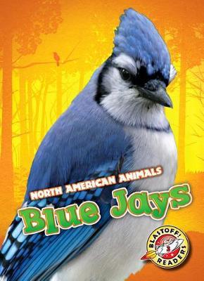 Blue Jays by Betsy Rathburn