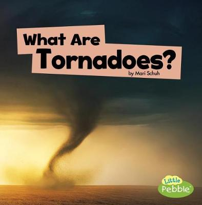 What Are Tornadoes? book