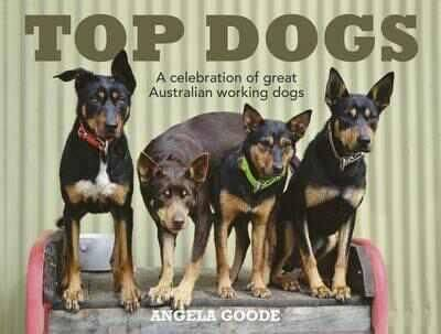 Top Dogs book
