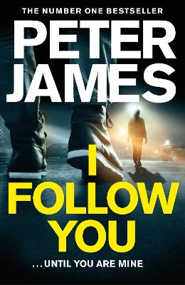 I Follow You book