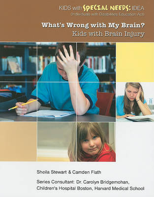 Whats Wrong With My Brain - Youth With Special Needs by Sheila Stewart
