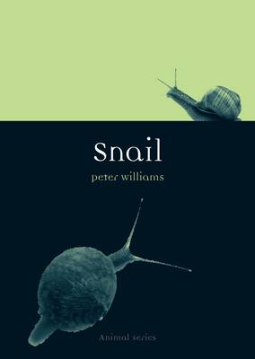 Snail by Dr. Peter Williams