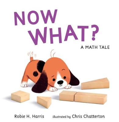 Now What? a Math Tale by Robie H Harris