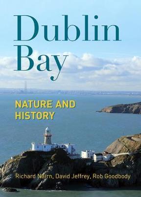 Dublin Bay by Richard Nairn