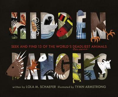 Hidden Dangers by Lola M. Schaefer