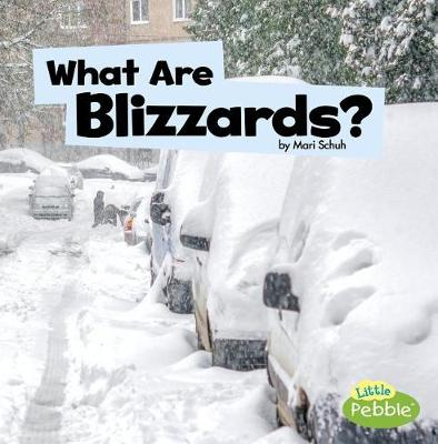 What Are Blizzards? book