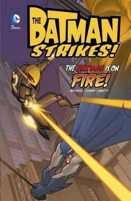 Batman Is on Fire! book